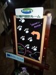 世界一有名な犬.JPG